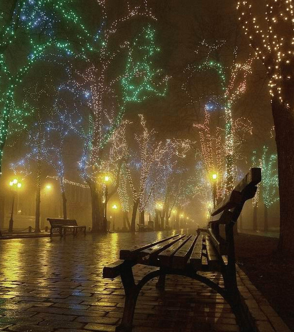 beautiful-christmas-lights1